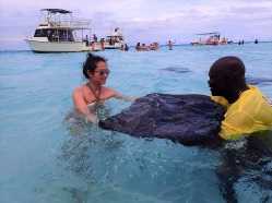 Sting Ray Adventure
